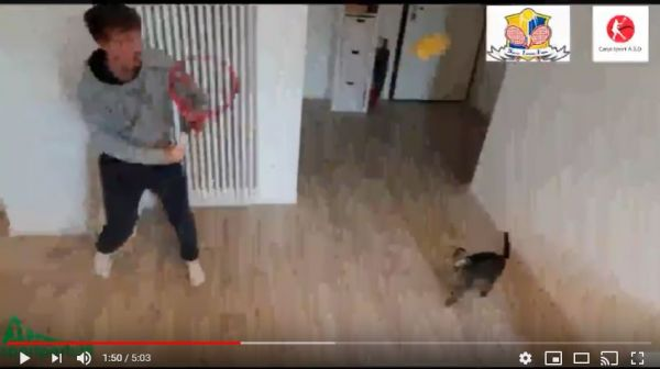 video didattico 2